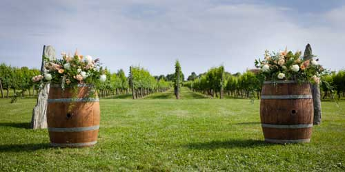 Vineyard Wedding Newport Vineyards Newport Rhode Island