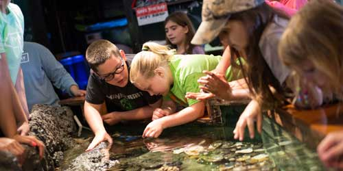 Touch Aquarium Save The Bay Narragansett Bay Rhode Island