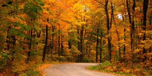 rhode island fall foliage scenic drives sightseeing tours