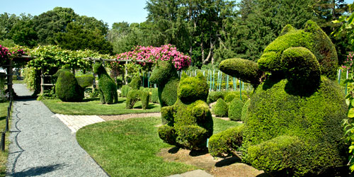 Green Animals Topiary Garden in Portsmouth RI with VisitNewEngland.com