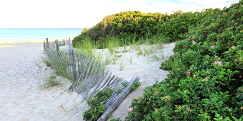 Mansion_Beach_Block_Island-credit--RI-Commerce-Corp (2)