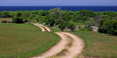 Rodman Hollow  trail on Block Island-credit-credit-RI Commerce Corp