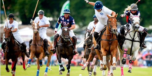 polo in newport ri