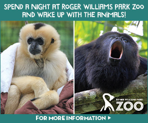 Enjoy an Overnight Adventure at Roger Williams Park Zoo in Providence, RI